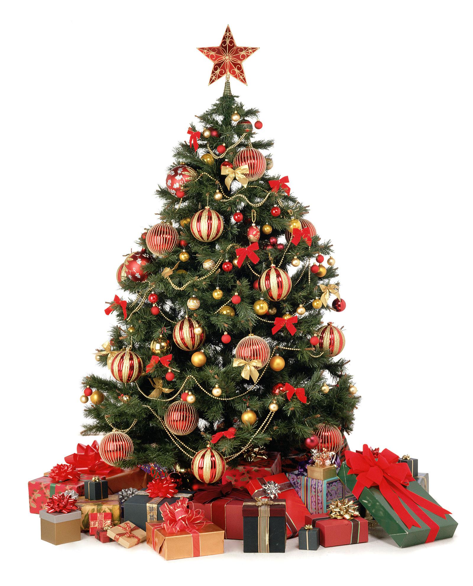 Christmas Family Sponsorship
