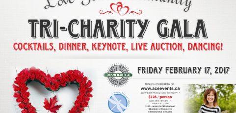 Love Your Community Tri-Charity Gala